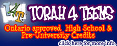 T4T small banner for website.jpg