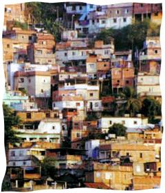A <i> favela </>