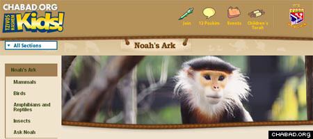 """The Noah's Ark Web page features high-resolution action photographs of animals, an """"Ask Noah"""" feature, interesting factoids about individual species and Torah lessons culled from animal behavior."""
