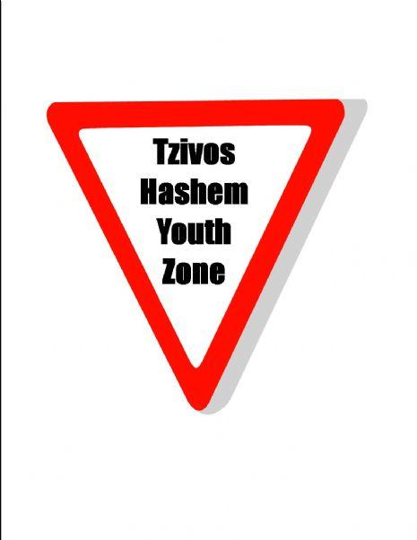 youth zone logo.jpg