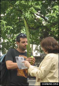 Goldie Gansbourg helps a Jewish student in Harlem shake the lulav and etrog during Sukkot.