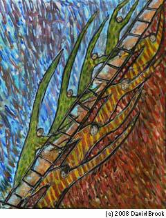 """""""L'échelle de Jacob"""" par David Brook"""