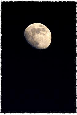 הברכה יכולה לצוץ לפתע מאיפשהו. ירח מפציע בלילה חשוך