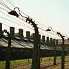 Sobre o Holocausto