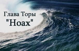 Torah Portion: Ноах