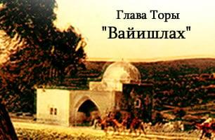 Torah Portion: Вайишлах