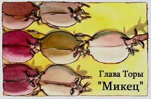 Torah Portion: Микец