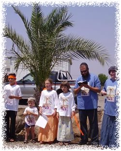 The first anniversary of the tree's replanting