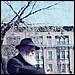 Déroulement de la bénédiction du soleil par le Rabbi de Loubavitch