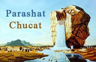 Torah Portion: Chucat