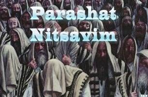 Torah Portion: Nitsavim