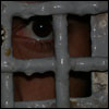 The Prisoner Needs Rehabilitation