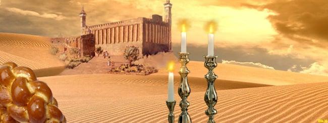 Torah Portion: Jaiei Sará