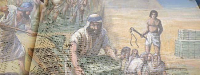 Textes & résumés: Résumé des Aliyot de Chémot