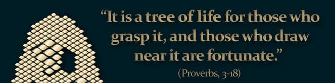 עץ חיים היא