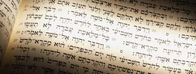 Torah Portion: Rosh Hashanah