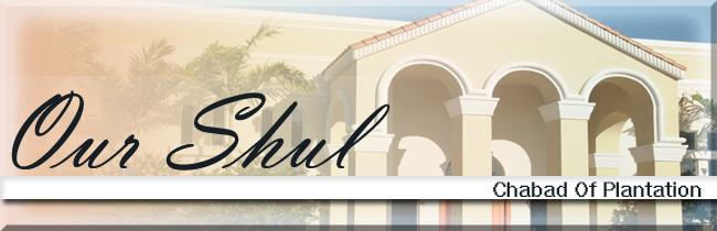 Our Shul Header copy.jpg