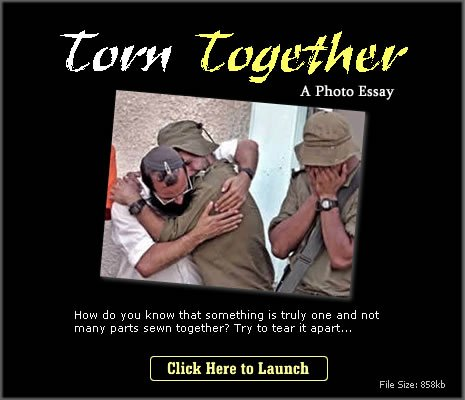 Torn Together How do you know that something is truly one and not many parts sewn together? Try to tear it apart...