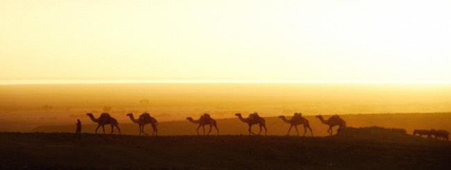 "Shuljan Shabat: ""El Objetivo de Deambular por el Desierto"""
