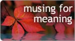 Musing for Meaning