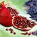Sweet Dreams of Fruit