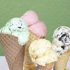 CTeen Ice Cream Dipping & Stump The Rabbi