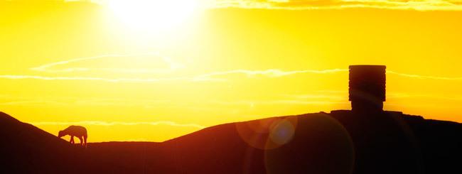 Vayikrà: È possibile Essere Perdonati Senza Sacrifici?