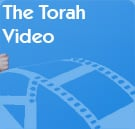 The Torah Video