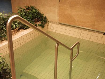 Dryan Family Mikvah Pool