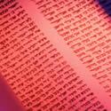 Women's Torah Study