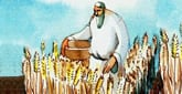 Torah Portion: Emor