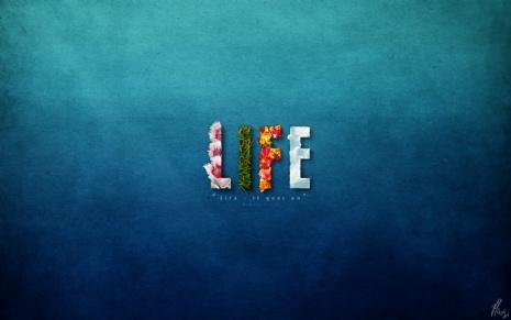 beautiful-life-wallpapers.jpg
