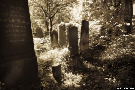 Weißensee Cemetery, the largest Jewish cemetery in Europe (Photo: Clifford Lester)