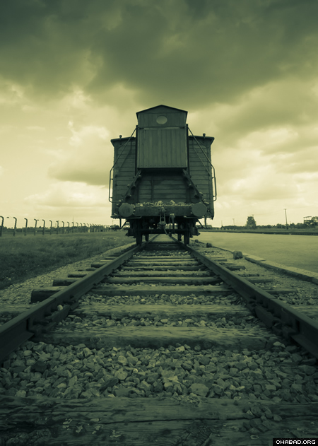 At Auschwitz (Photo: Clifford Lester)