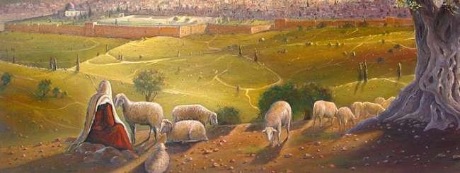 Audio Classes: A Shepherd's Responsibility