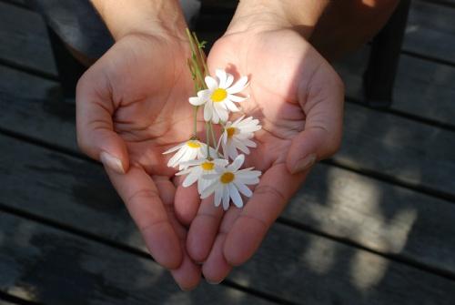 Flowers - giving.jpg