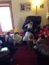 Purim Kids Club 2014