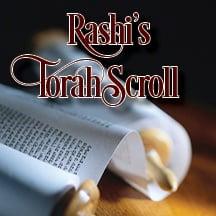 Rashi Projects.jpg