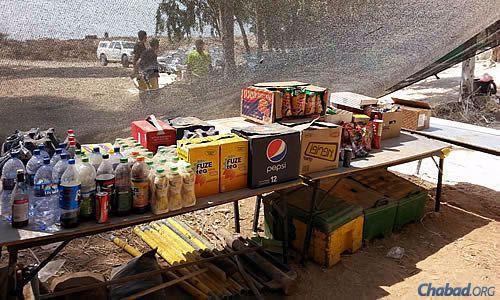 Beverages necessary for hydration in the Mideast summer sun.