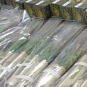 Sukkot Orders 2020