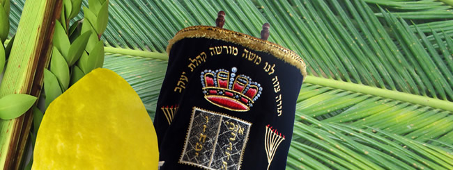 Sukkot-and-Simchat-Torah_Banner_large.jpg