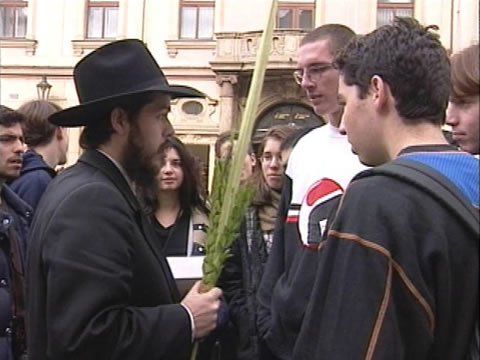 One Sukkah, One Lulav, One People