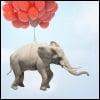 מה יותר חזק מהפיל? ואיך משיגים חירות אמתית?