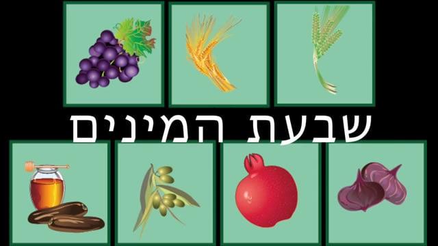 Seven Wonderful Fruits of Israel - Children's Videos ...