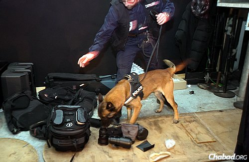 Security forces, complete with guard dogs, were present at the Feb. 11 Beth Loubavitch gala dinner, which drew 2,000 participants this year, more than usual. (Photo: Thierry Guez)