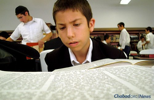 Studying Talmud. (Photo: Lubavitch Mesivta of Chicago)