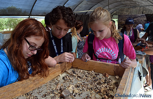 Hannah Tighe, Maddy Cooper and Sarah Schiffer examine rocks, minerals and other good finds as part of a sifting project.