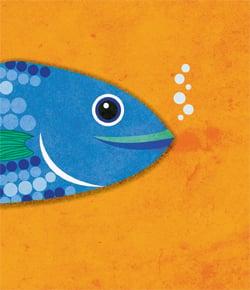 ראש דג. משמש תחליף נפוץ לראש אַיִל