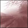 Crimson Mist