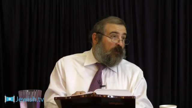 Rambam: Shechitah, Chapter 8